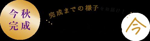 琉球御廟の今